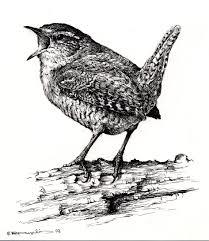 Vom Vogelsang